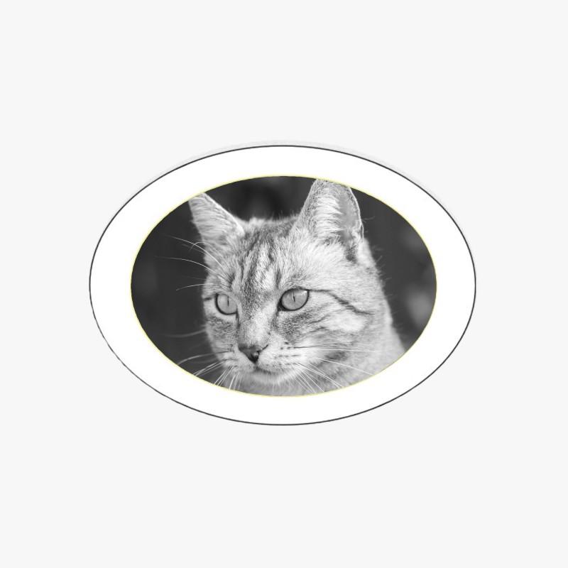 MÉDAILLON PHOTO PORCELAINE HORIZONTAL OVALE NOIR ET BLANC FILET OR POUR ANIMAUX