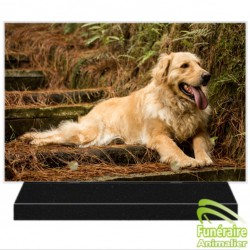 PLAQUE FUNÉRAIRE ALTUGLAS RECTANGULAIRE GOLDEN RETRIEVER 105001